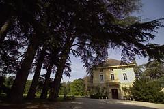 Le domaine des séquoias Eric Jambon Bourgoin, Lyon, France