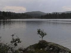 Llac de montanya (fenrod) Tags: noruega haukeli