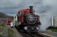 BFF Train