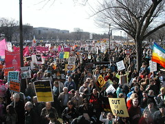 Wall to wall on the Mall
