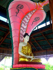 Buddha and naga