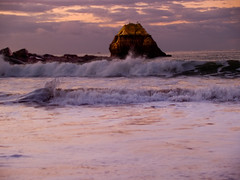 TWO BIRDS AND A WAVE (peke_cheeks) Tags: portugal beautiful birds rock wow wave algarve thecontinuum p1f1 aplusphoto priaradarocha cameraclub2527