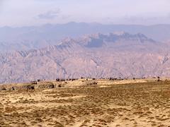 Above Gui'de (rudenoon) Tags: sony amdo tibetan dscf828 qinghai guideschool guidecounty