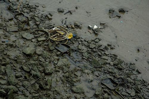 Low Tide Story