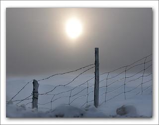Warming Planet
