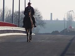 2007_02_18_-_000031 (wiadukt_luty) Tags: cowboy 18 2007 luty pogoda warta niedziela wiadukt srem rem kowboj
