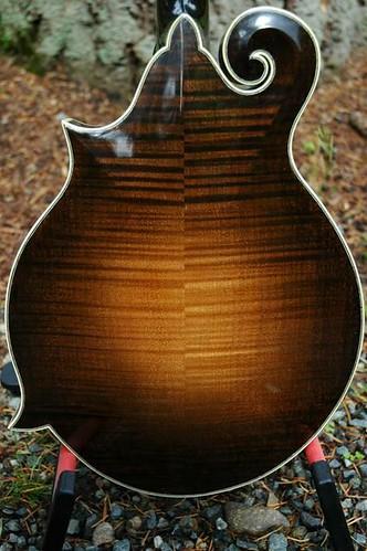 F5 Mandolins F5 Beginner Chords For Guitar