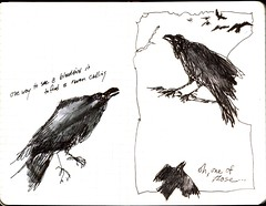 Ravens are one way of seeing blackbirds (MaureenShaughnessy) Tags: blackandwhite bw moleskine 1025fav sketch poem drawing journal drawings sketchbook doodles sketches blackbird eclectic wallacestevens sketchjournal thirteenways