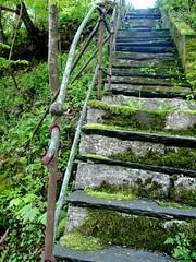 (forteller.ipernity.com) Tags: bergen norway norge stair 2005 deleteme2 deleteme saveme deleteme3 deleteme4 deleteme5 deleteme6 deleteme7 deleteme8 deleteme9