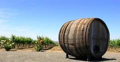 preston winery (vsz) Tags: agriculture winery barrel fields olympus geotagged geolat46321654 geolon119082949 c8080