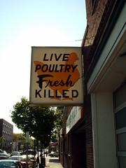 Mmmm chicken! 001