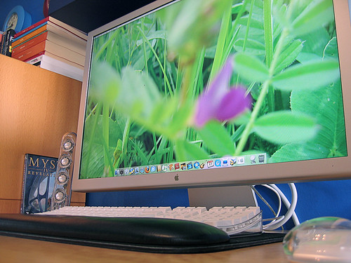Apple 30 inch HD Cinema Display