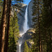 Upper and Lower Yosemite Falls - by tychay