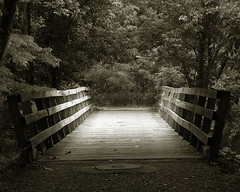 Bridge (eqqman) Tags: road park bridge trees light nature monochrome forest outdoors woods topf50 bravo pennsylvania path topv1111 award 100v10f 500v50f boardwalk mystical wildwood magical platinum harrisburg tinted blueribbonwinner cotcmostfavorited fivestarsgallery kkfav p1f1 kkblog