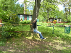 carbeth 20 : catherine on tree swing (biotron) Tags: carbeth stirlingshire blanevalley tree swing huts fence