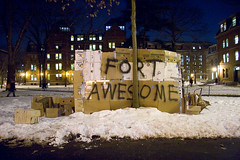 Fort Awesome, Harvard Yard