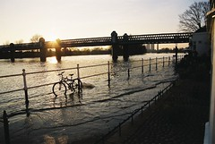 The Thames at high tide, Strand on the Green, Chiswick (Bruno Girin) Tags: unitedkingdom uk greatbritain england london thames river high tide bicycle sunset geolat515 geolong01166667 chiswick