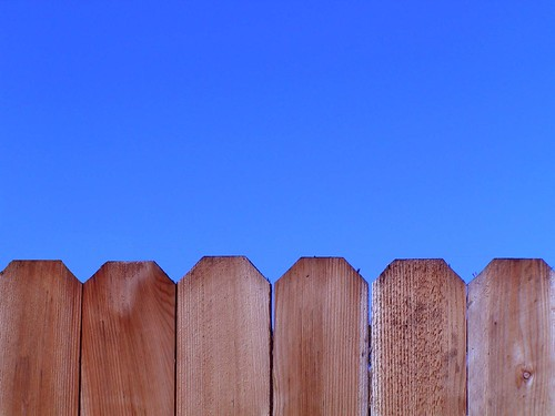 the backyard fence