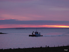 Another Scapa Flow December Dawn (orquil) Tags: another scapaflow december dawn field sheep fenceline dark shadows foreground seaside calm sea houton bay workboat cchariot multiworkboatsilhouette leaskmarine underway distant empty oiltanker anchored southisles southronaldsay colourful skyline presunrise colours attractive cloudscape orkney islands scotland uk unitedkingdom greatbritain orcades maritime interesting nice beautiful memorable seascape
