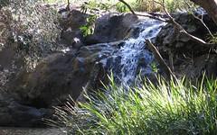 551 Barretts Creek Rd, Barretts Creek NSW