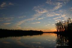 Clouds In The Water ⅩⅦ (mightyquinninwky) Tags: trees sky water clouds reflections evening december kentucky lexingtonky richmondroad fayettecounty centralkentucky ellserlielake
