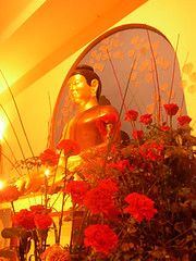 Garden Shrine Room Buddha Rupa 3