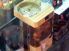Orange Squeezing Machine (spelchec) Tags: orange phone baltimore xs squeezing