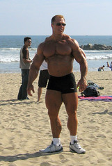 Gary Strydom 2006 Venice Beach CA (114) (Pete90291) Tags: pecs muscles arms muscular chest bodybuilder biceps abs quads musclemen ifbbpro probodybuilder garystrydom ifbbbodybuilder professionalbodybuilder