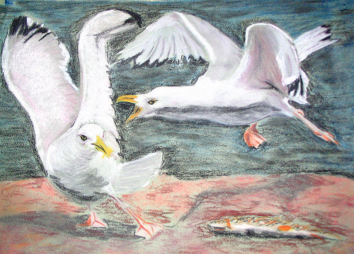 Seagulls - painted and then photographed