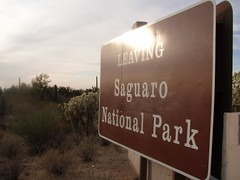 Saguaro National Park (Happysmurfday) Tags: arizona tucson az saguaronationalpark