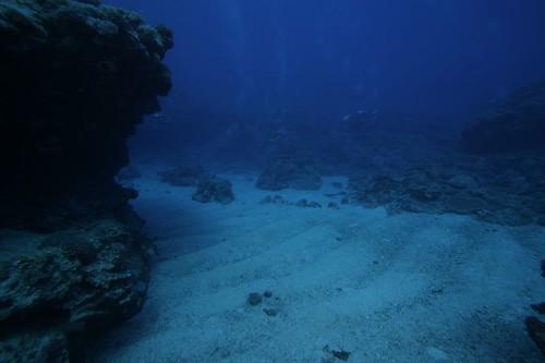 海床沙地紋路是海浪營力作用造成的差異