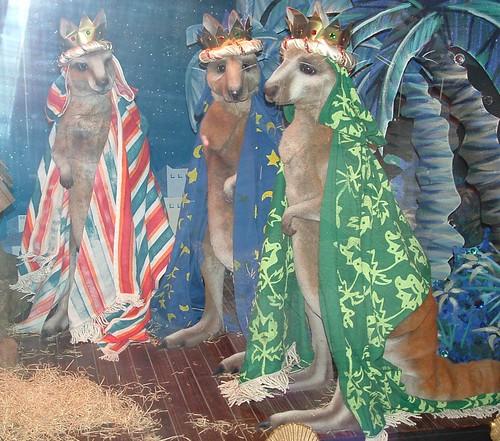 Three Wise Kangaroos
