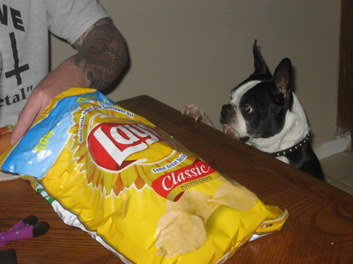 Gimme some chips!