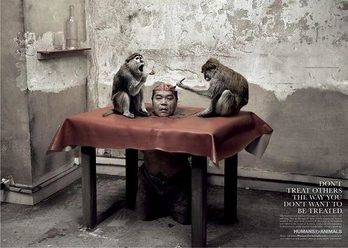 Humans for Animals (Monkeys)