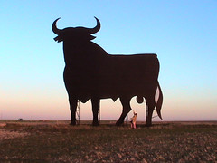 toro osborne cordovilla (-Merce-) Tags: españa geotagged spain bull salamanca toro osborne spanien touro castillaleón brau stier cordovilla geo:lat=4092891592095626 geo:lon=5409096269438786 mmbmrs