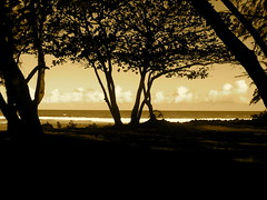 Hawaii - 181.jpg (.byron) Tags: hawaii bigisland waipio