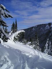 Snow Curve