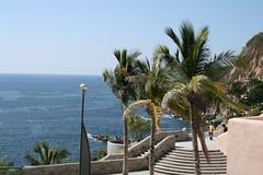 Borrachas de sol (Esparta) Tags: mexico acapulco quebrada mexico:state=guerrero mexico:estado=guerrero mexico:state=gro mexico:estado=gro