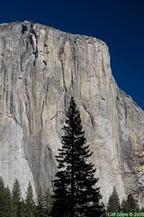 The face of El Capitan (Cliff Stone) Tags: california nature canon bluesky yosemite yosemitenationalpark elcapitan nationalparks usnationalparks canon350drebelxt beautyofnature sierranevadamtns