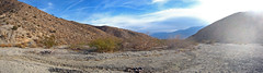 Big Morongo Canyon Lower End Pano