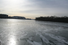 Frozen Potomac Facing Kennedy Center (melanie.phung) Tags: seagulls ice washingtondc frozen favorites georgetown potomac rooseveltisland inphonic kennedycenter melaniephung