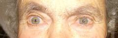 Avó: cinzento/azul e castanho