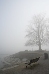 Misty afternoon (*regina*) Tags: trees mist tree fog germany bench nebel atmosphere blogged bodensee konstanz constance lakeconstance instantfave twtme cy2 challengeyouwinner thechallengegame challengegamewinner twtmesh310729