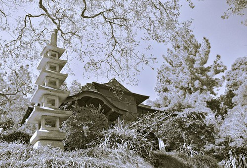 house at the japanese garden
