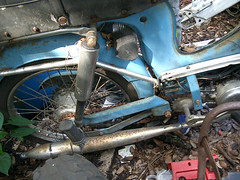 Buddy3 (antlerbaby) Tags: buddy sparta moped sachs