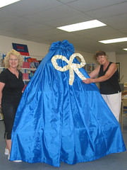 What's under wraps at Sylvania Library