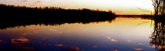 Early Evening Panorama  (mightyquinninwky) Tags: trees sky panorama water clouds reflections evening december kentucky lexingtonky richmondroad fayettecounty centralkentucky kodakv570duallens ellserlielake
