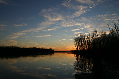 Clouds In The Water ⅫⅠ (mightyquinninwky) Tags: trees sky water clouds reflections evening december kentucky lexingtonky richmondroad fayettecounty centralkentucky ellserlielake