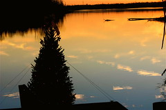 Christmas On Ellserlie Lake ⅈⅈ (mightyquinninwky) Tags: christmas wood trees sky reflection water clouds pier dock december kentucky lexingtonky richmondroad waterscape fayettecounty centralkentucky coveredboatslip ellserlielake