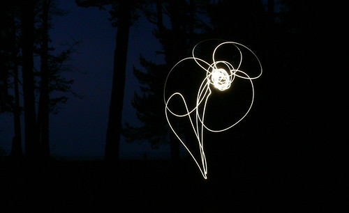 Night flower I Nakts zieds